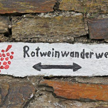 Wandern, Wein und Wissen auf dem Rotweinwanderweg im Ahrtal
