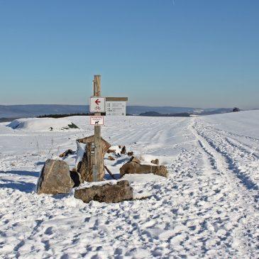 Wandern im Schnee – die Wacholderheide im Sauerland lockt