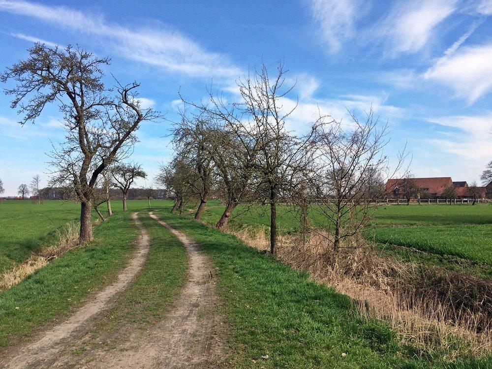Radtour im Münsterland, Fahrrad fahren, Münsterland, Lüdinghauser Acht, Lüdinghausen, Radweg Obstwiesen