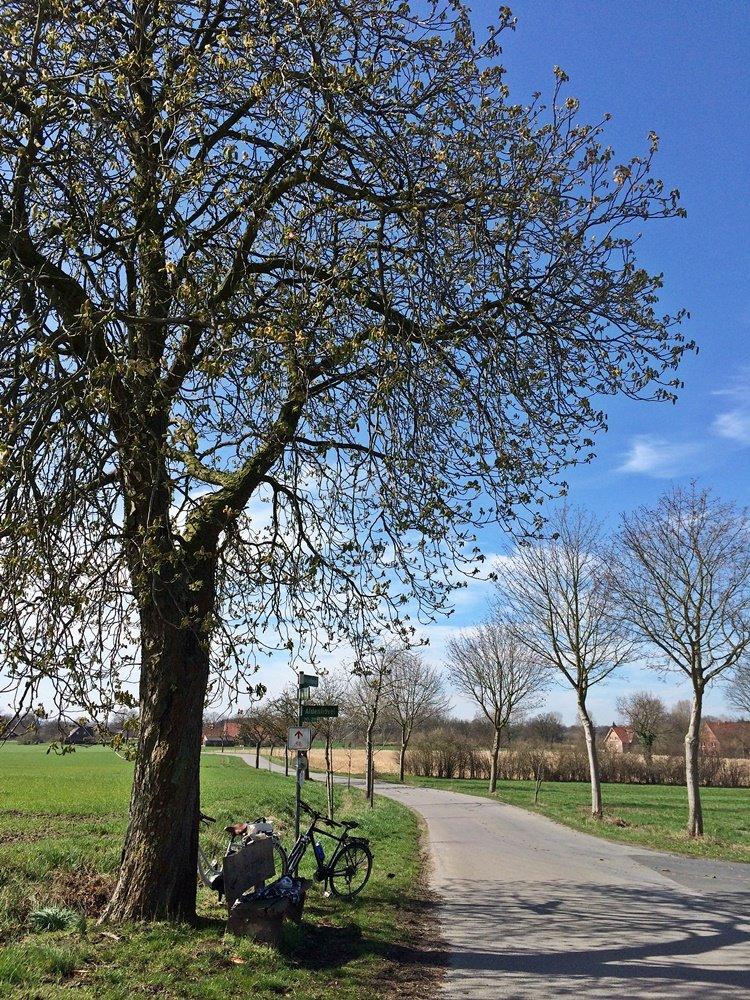 Radtour im Münsterland, Fahrrad fahren, Münsterland, Lüdinghauser Acht, Lüdinghausen, Radweg