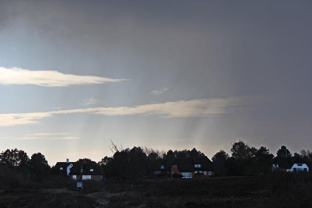 Braderuper Heide, Sylt, Spaziergang, Winter, Heide, Schleswig Holstein, Geheimtipp, Wattenmeer