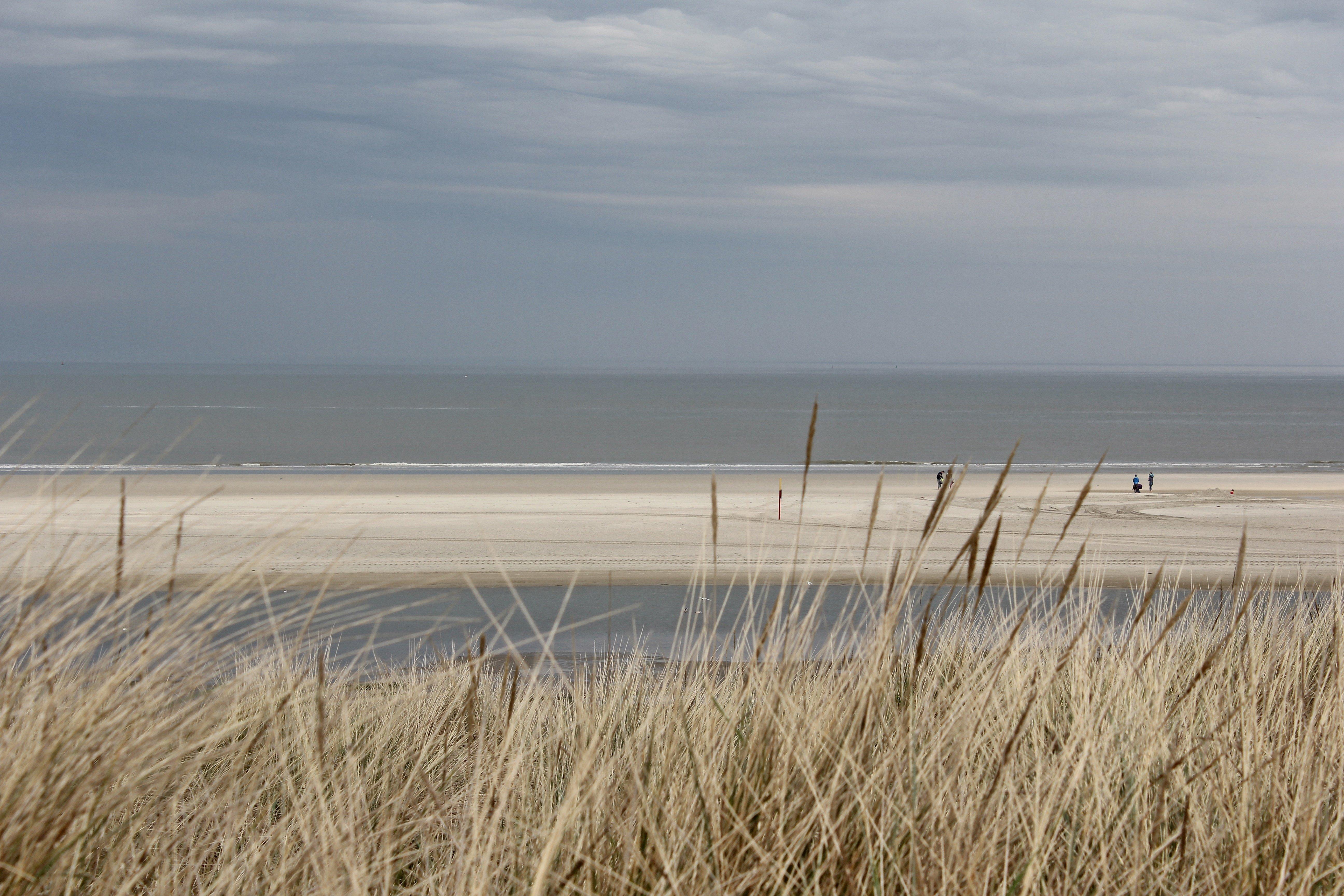 Nordseeküste Tipps, Langeoog Strand