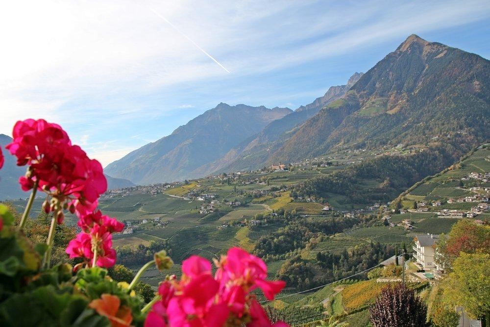 Herbsttage in Südtirol - Törggelen und Wandern in Schenna