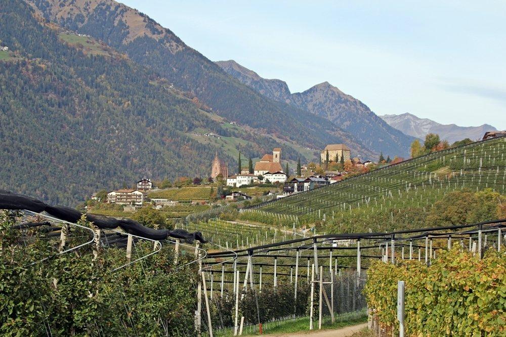 Törggelen, Schenna, Südtirol, Wiesenweg