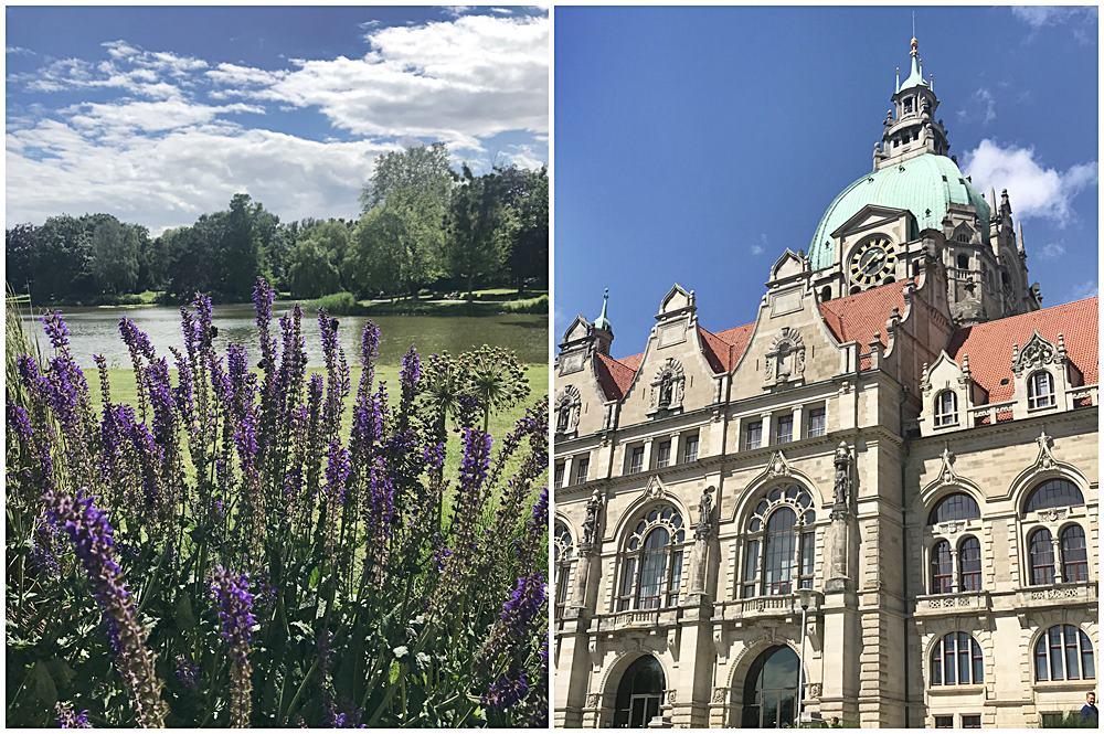 Maschteich mit üppiger Lavendelbepflanzung in Hannover, das Neue Rathaus in Hannover