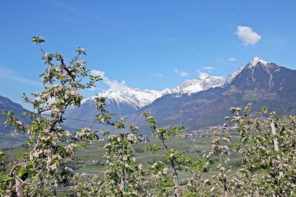 Was sollte man in Südtirol gemacht haben? Einfach nur die Panoramen genießen